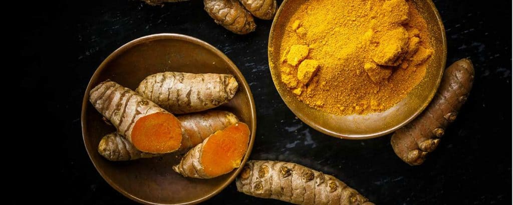curcumin extract supplier in india