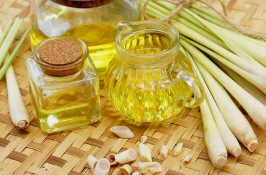 lemongrass oil extract supplier