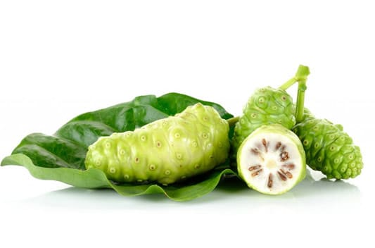 noni extract supplier india