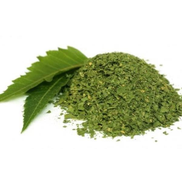 Indica Extract Supplier
