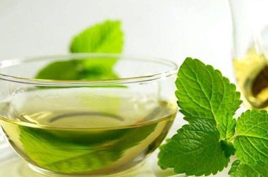 tulsi leaves liquid extract supplier india