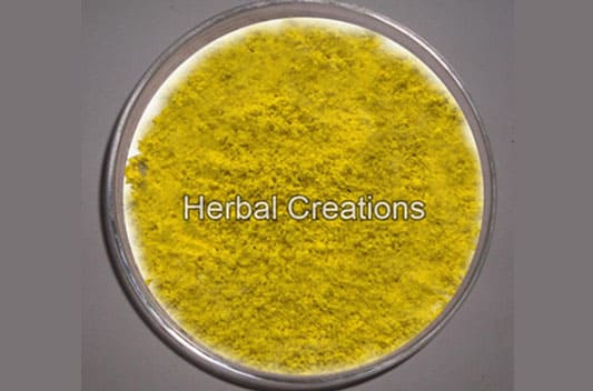 berberine hydrochloride extract supplier india