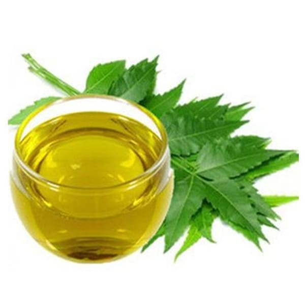 Neem Extract Manufacturer India