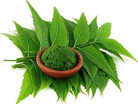 Indica Extract Manufacturer