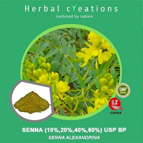 Senna Extract Supplier